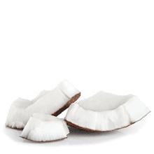 Polvo de cáscara de coco